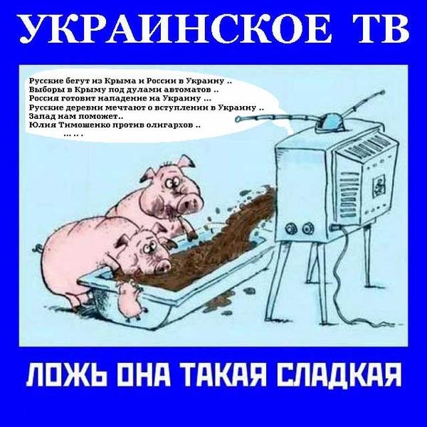 http://content-21.foto.my.mail.ru/mail/dmitriy_glukhov/_answers/i-1530.jpg