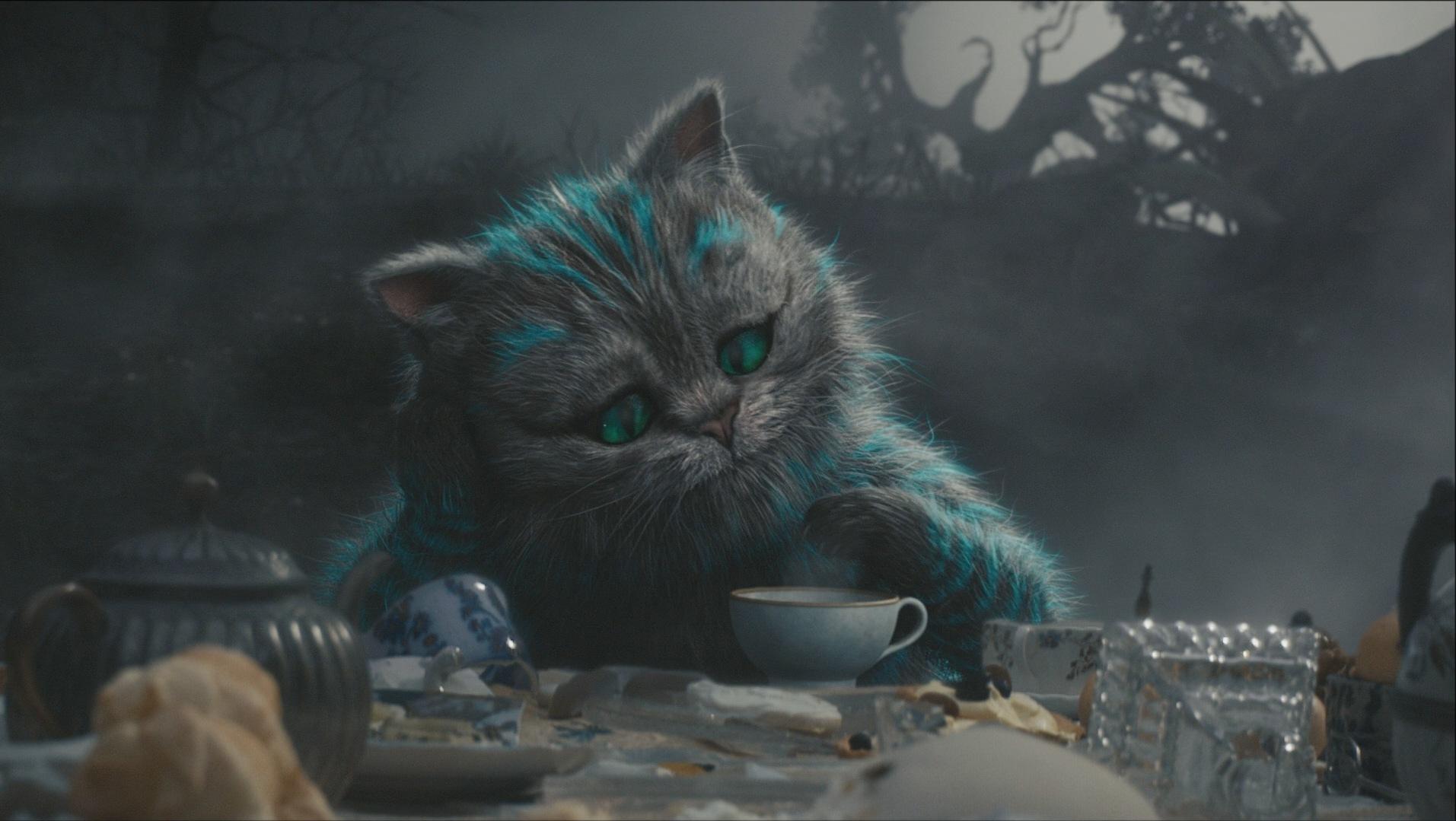 Картинки чеширский кот на рабочий стол