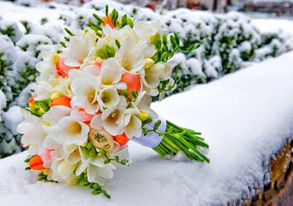цветы фото красивые букеты на снегу предположить