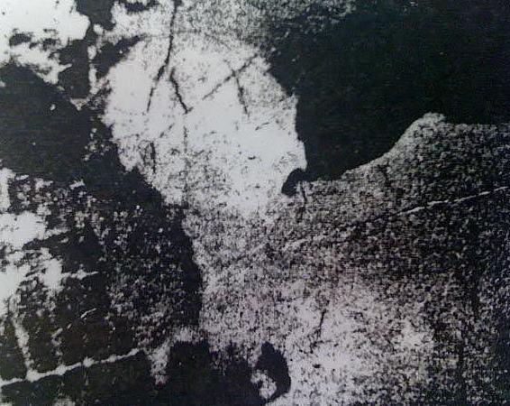 Картинка с коровой тест на шизофрению